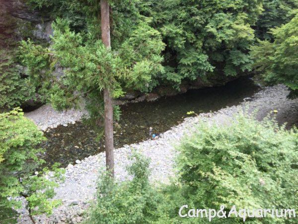 【夏休みキャンプにオススメ】ウッドルーフ奥秩父オートキャンプ場で初キャンプ