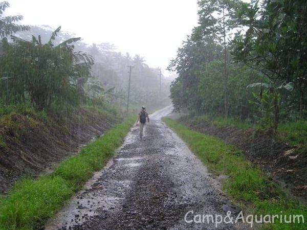 梅雨前にやっておきたいカビ対策