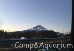 富士山 車窓