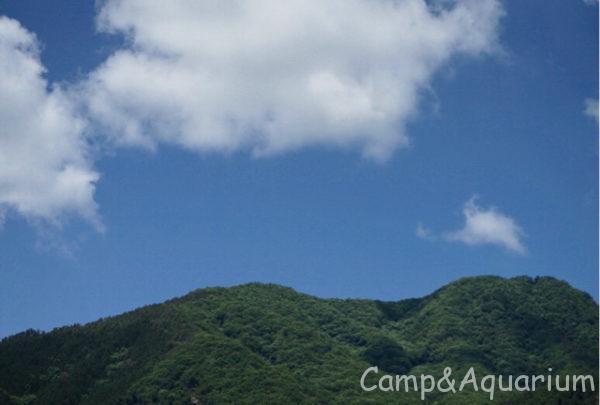 ほったらかしキャンプ場青空