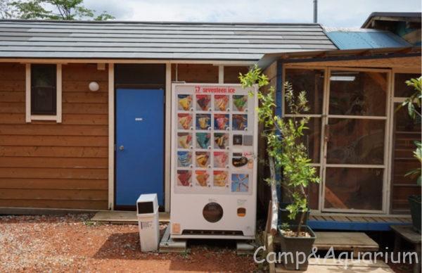 ほったらかしキャンプ場アイスクリーム自販機