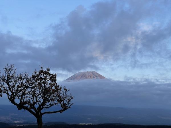 12月ふもとっぱら富士山